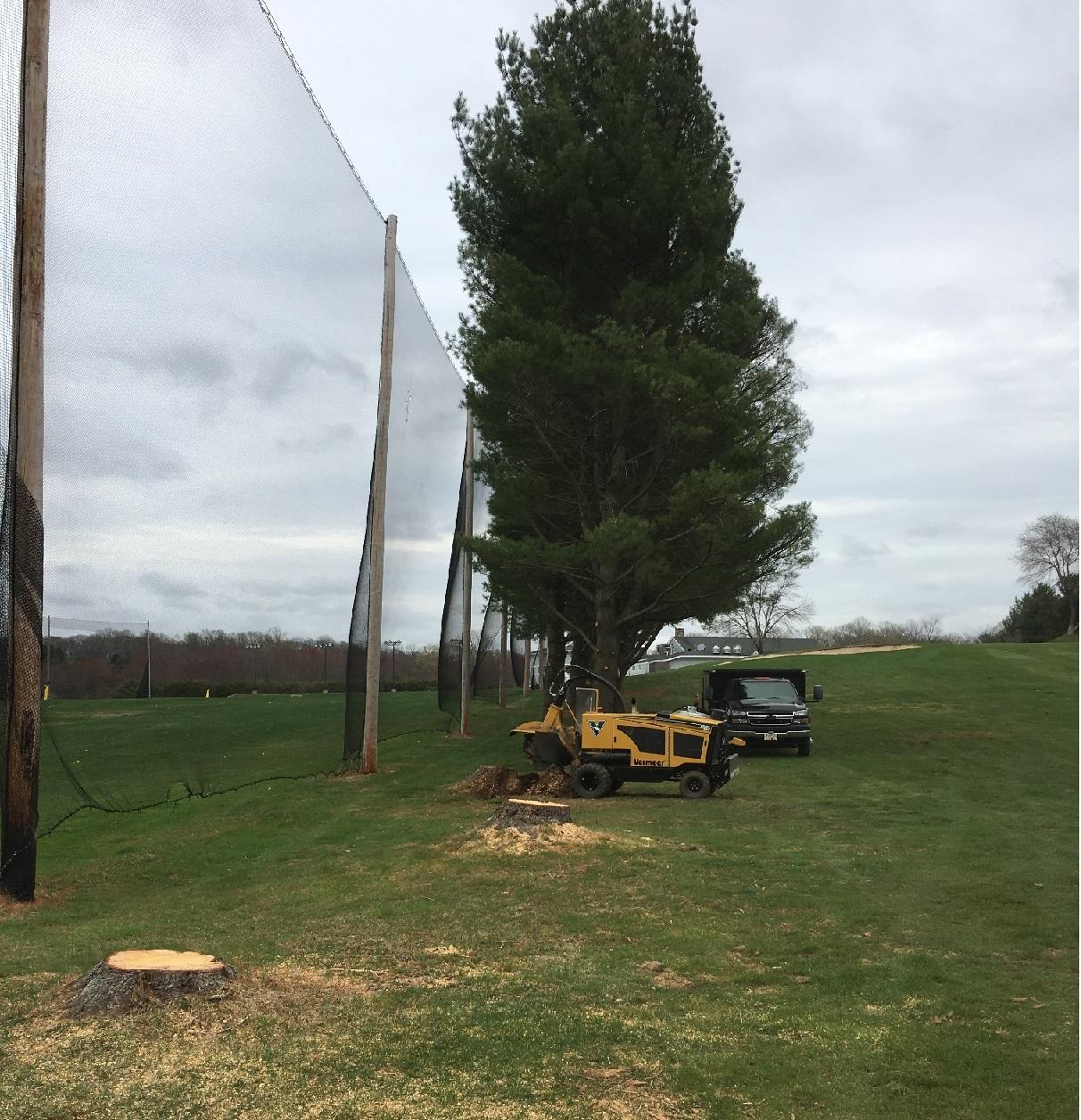 Stump removal Monroe Connecticut