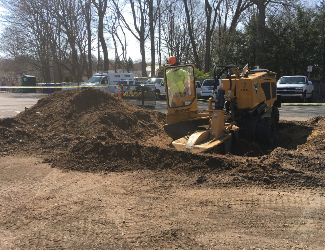 stump grinding westport, ct