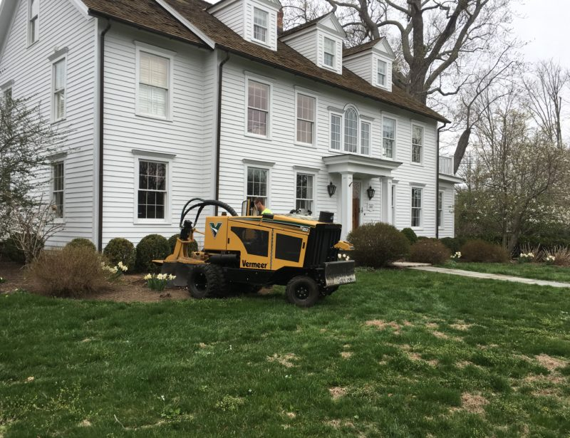 stump removal Fairfield, CT