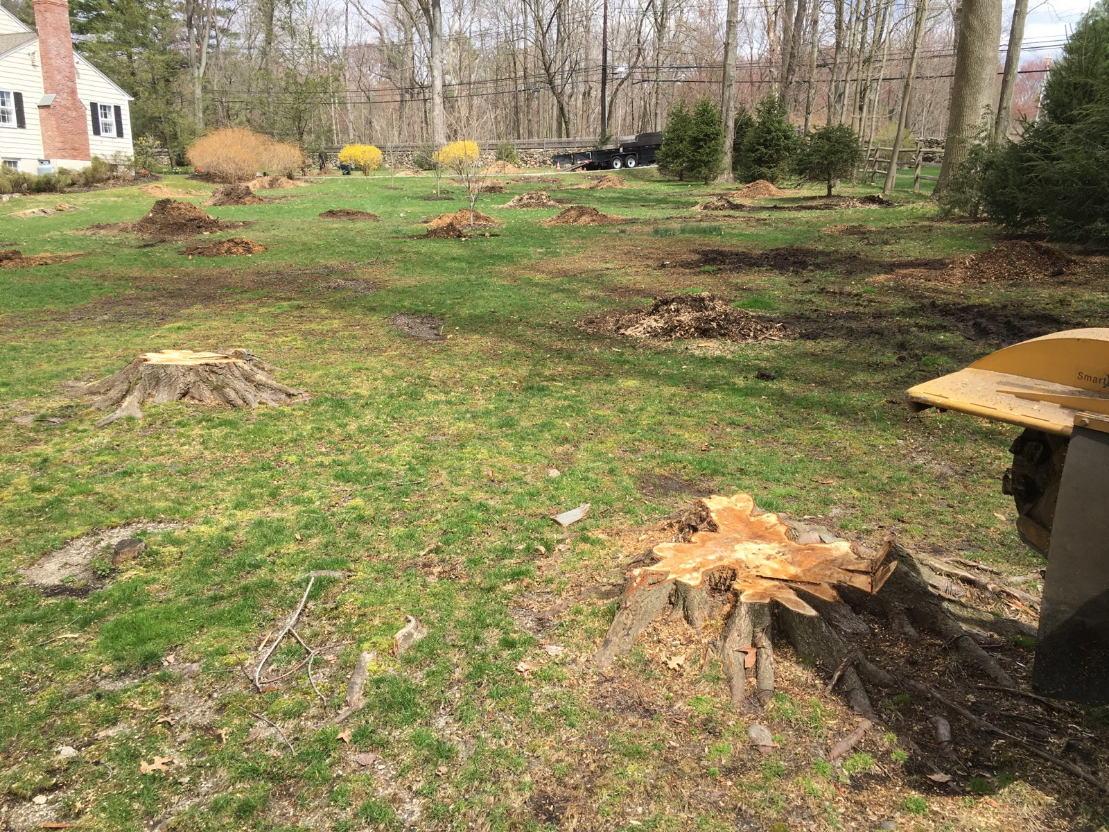 Stump removal in Darien, CT